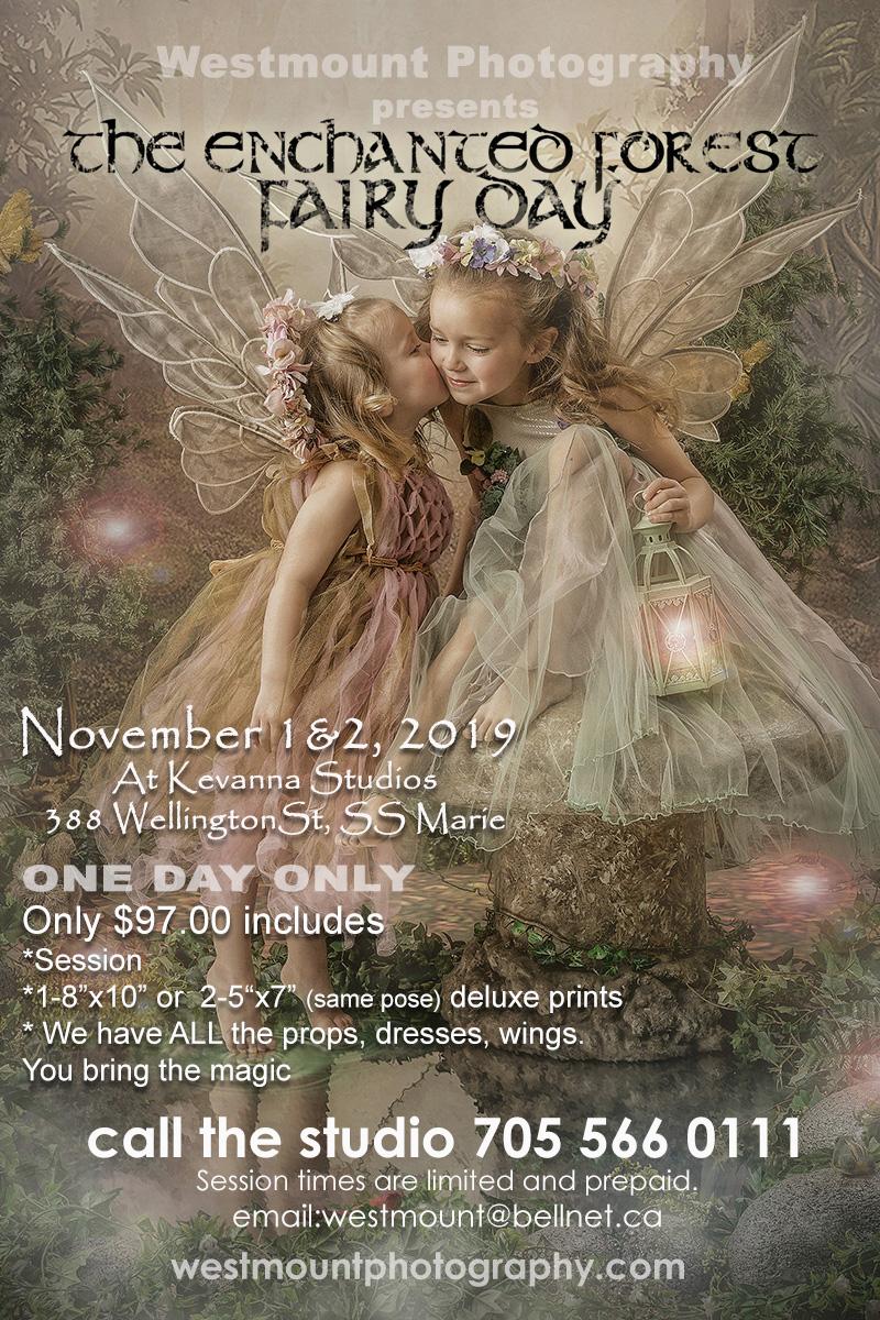 Fairy Day-S S Marie - Sudbury wedding baby fairy