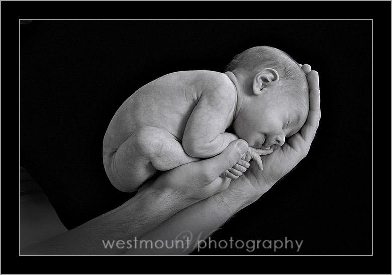 Newborn session tips